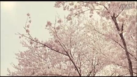 【三浦春马】君の记忆