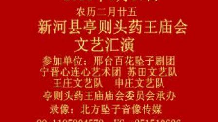 新河县亭则头2012年农历2月25药王庙会