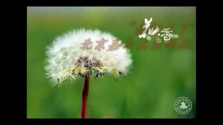 北京世嘉车友会(嘉车俱乐部)2011年活动回顾(完整版)