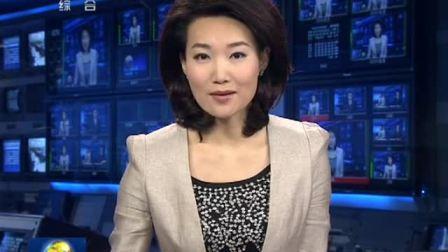 召开第七次全体会议决定任命为香港特别行政区第四任行政长官 120328 新闻联播