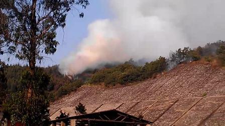 昆明市晋宁县森林大火蔓延到玉溪境内