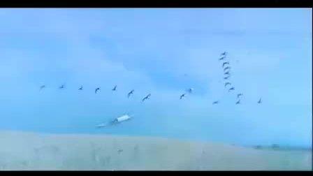 2012中华龙舟大赛鄱阳湖国家湿地公园-中国湖城-鄱阳