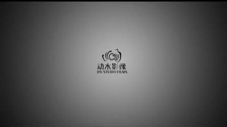 DS-STUDIO动水影像 《昕有灵玺》  济南婚礼电影