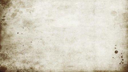 Lady of Shalott Shallot 吉林一中09级 中加班 Daniel Xiao