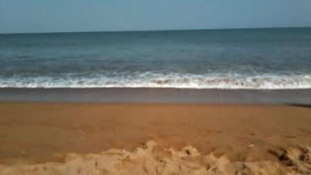如果大海能够带走我的哀愁,就让它随风飘远----献给白菜