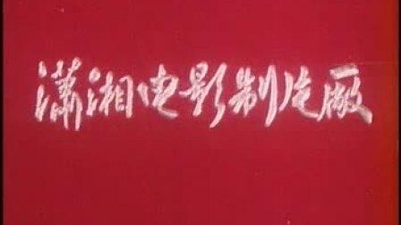 电影《贺龙军长》
