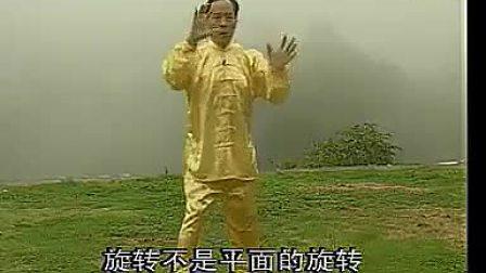 【张志俊先生】新架一路教学(张鹏老师演示)