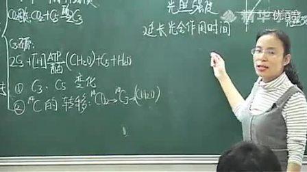 高中生物马培梅精华学校第5讲细胞的代谢下 2