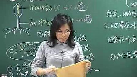 高中生物马培梅精华学校第1讲遗传的分子基础2