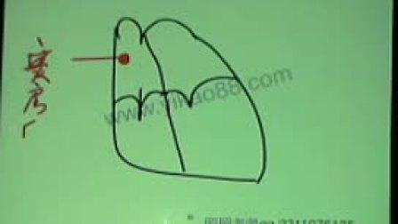 第2章--心律失常--循环系统--2014-02-18晚课程