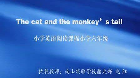 小学六年级英语The cat And the monkey s tail教学视频赵红