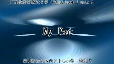 小学一年级英语 My Pet教学视频广教社杨剑飞