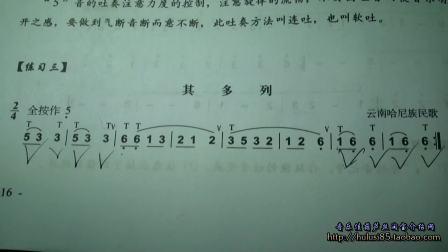 葫芦丝入门教学《其多列》曲谱分析讲解示范