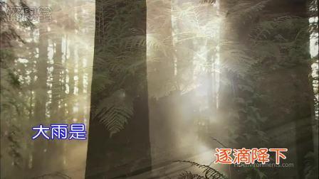 新编赞美诗_206_〈赐福如雨歌〉_KTV_高清_基督教