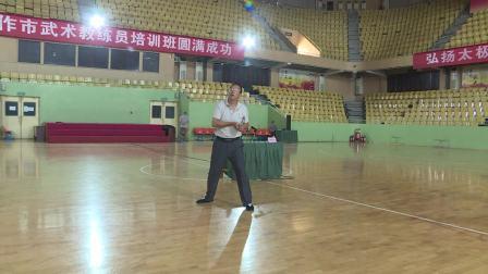 赵振升老师在2018年焦作市武术教练员培训班中讲解发力并示范