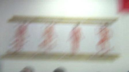 中医正骨推拿培训视频李茂发达摩正骨108术-达摩正骨手法