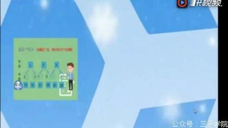 人教版小学二年级数学上册数学广角搭配