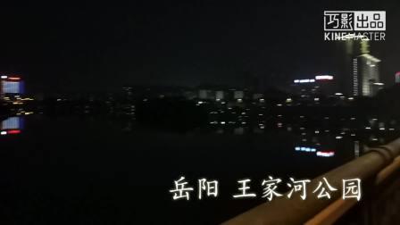 王家河公园记20170308 1920x1080 8.51Mbps 2017-03-08 21-04-53