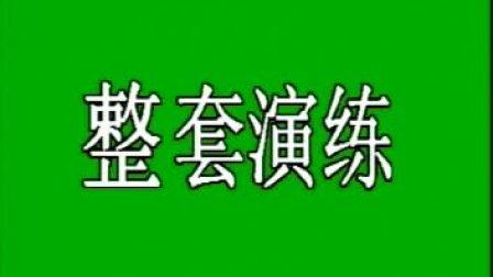 武式太极拳96式整套演练_标清