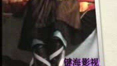 三龙琵琶2