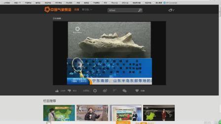 中国气象频道 生活气象(新版)