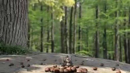 肯德基香栗双层鸡腿堡-松鼠篇