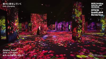 MORI Building DIGITAL ART MUSEUM: EPSON teamLab Borderless / Ever-Changing