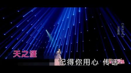 王嘉美 - 天之大 (演唱会)
