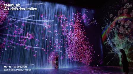 teamLab : Au-delà des limites / Transcending Boundaries (Crows)