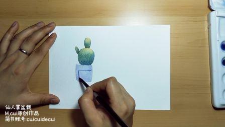 爱剪辑-M.cui小课堂-仙人掌