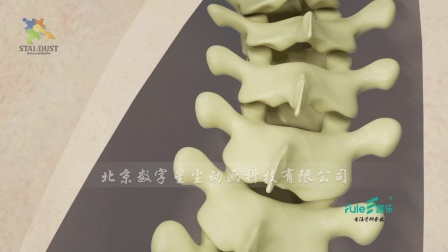 医疗器械三维动画 手术过程演示 北京三维动画公司 脊椎纠正3d动画 专业 专注