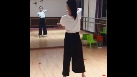 阜阳艺路成人古典舞冰菊物语分解教程第四节