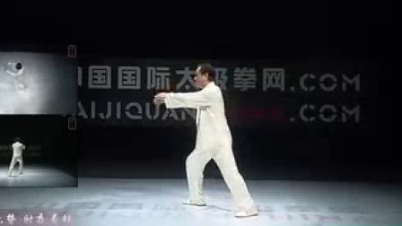 我在赵幼斌大师:杨式太极拳传统套路八十五式经典教学截了一段小视频