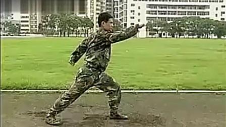 军体拳第一套教学视频 功夫
