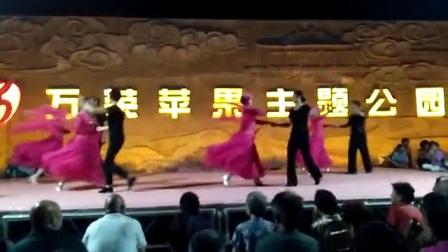 冯村平平舞蹈队