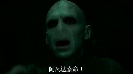 我在哈利·波特与死亡圣器(下) 国语版截取了一段小视频