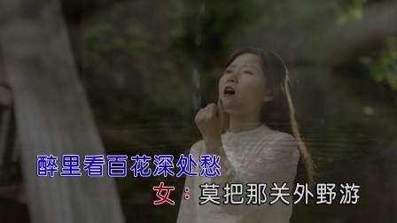 李袁杰 & 金南玲 - 离人愁