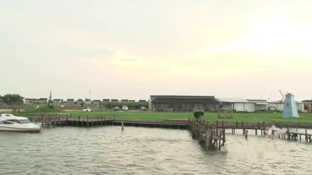 """实地探访黄晓明代言的阳澄湖品牌""""蟹太太""""养殖基地"""