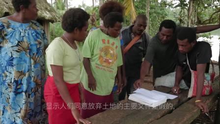 巴布亚新几内亚非法砍伐