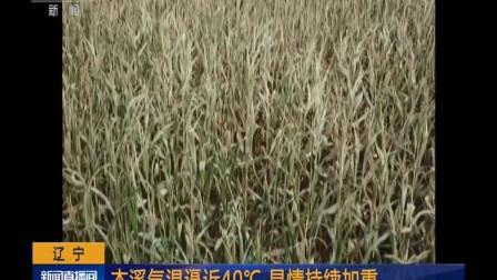 辽宁:本溪气温逼近40℃ 旱情持续加重 180805