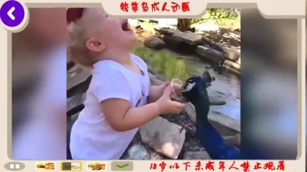 最佳搞笑动物和婴儿编纂搞笑婴儿视频