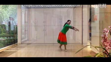 応子广场舞《梦见你的那一夜》含背面与分解教学 广场舞视频大全-_标清