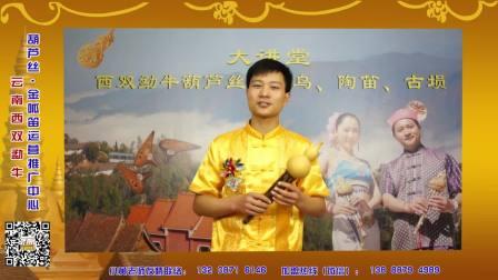 云南西双勐牛葫芦丝教学——葫芦丝演奏二度创作