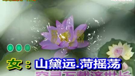 蝴蝶兰伴唱荷花韵.