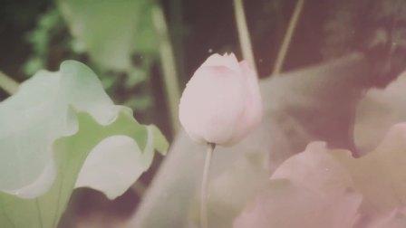 【古今cp群像】七夕