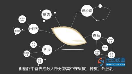 深粮 315宣传片大米篇 广州FLASH动画设计制作公司|Flash动画|MG动画|二维动画设计制作有限公司
