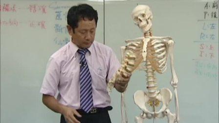 chiro41曹修悌美式整脊-脊椎矫正教学41-骶骨-01-简介--中华脊椎健康研究中心