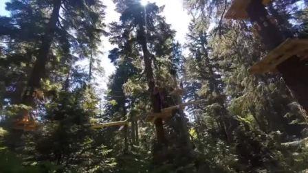 """森林高空走""""钢丝"""",敢不敢来挑战下!"""