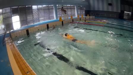 学习自由泳20180903