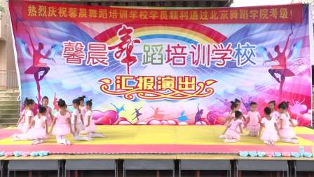 蓝山县楠市馨晨舞蹈培训学校2018汇报演出
